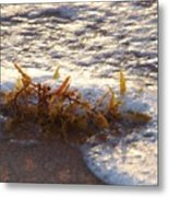 When The Water Hits The Sand Metal Print by E Luiza Picciano