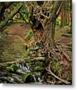 Where The Ents Are Metal Print by Angel  Tarantella