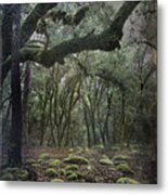 Where The Wild Hearts Roam Metal Print by Laurie Search