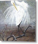 White Egret Metal Print by Kevin Brant