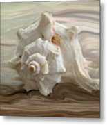 White Shell Metal Print by Linda Sannuti