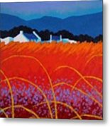 Wild Flowers County Wicklow Metal Print by John  Nolan