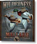 Wilderness Mallard Metal Print by JQ Licensing