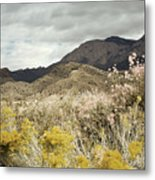 Wildflower Mountain Metal Print by Andrea Hazel Ihlefeld