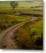 Willow Metal Print by Davorin Mance