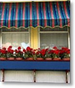 Window Box Geraniums Metal Print by Colleen Kammerer