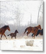 Winter Gallop Metal Print by Mike  Dawson