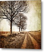 Winter Track With Trees Metal Print by Meirion Matthias