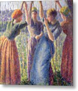 Women Planting Peasticks Metal Print by Camille Pissarro