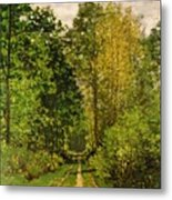 Wooded Path Metal Print by Claude Monet