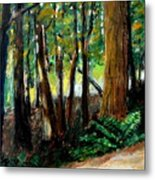 Woodland Trail Metal Print by Michelle Calkins