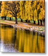 Yellow Autumn Metal Print by Scott Hovind