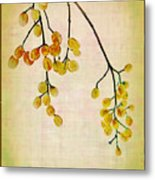 Yellow Berries Metal Print by Judi Bagwell