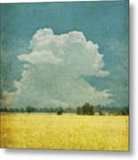 Yellow Field On Old Grunge Paper Metal Print by Setsiri Silapasuwanchai