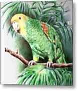 Yellow-headed Amazon Parrot Metal Print by Arline Wagner
