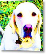 You Are My World - Yellow Lab Art Metal Print by Sharon Cummings