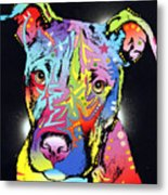 Young Bull Pitbull Metal Print by Dean Russo