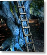 Young Woman Climbing A Tree Metal Print by Jill Battaglia