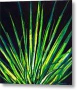 Yucca Metal Print by Melvin Moon
