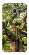 Angel Oak Tree Of Life Galaxy S6 Case by Dustin K Ryan