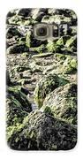 Algae Rocks Galaxy S6 Case by Arya Swadharma