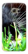 In The Grass Galaxy S6 Case by Jai Johnson