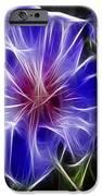 Blue Hibiscus Fractal iPhone Case by Peter Piatt