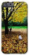 Maple tree - Fall color iPhone Case by Hisao Mogi