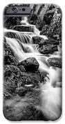 Winter Rapids iPhone Case by Adrian Evans
