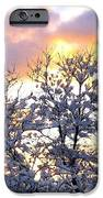 Wintry Sunset iPhone Case by Will Borden