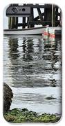 Dockside iPhone Case by JC Findley