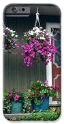 Home Sweet Home iPhone Case by Frozen in Time Fine Art Photography