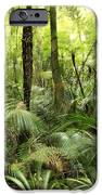 Tropical jungle iPhone Case by Les Cunliffe