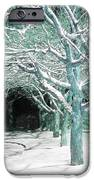 Winter Trees iPhone Case by Guy Ricketts