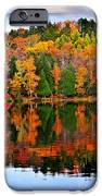 Fall forest reflections iPhone Case by Elena Elisseeva