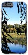 Leaves iPhone Case by Les Cunliffe