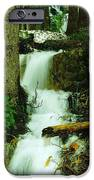 A WATERFALL IN SPRING THAW iPhone Case by Jeff  Swan