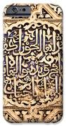 Alhambra panel iPhone Case by Jane Rix