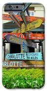 All Charlottes iPhone Case by Randall Weidner