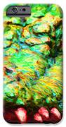 Alligator 20130702 iPhone Case by Wingsdomain Art and Photography