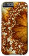Amber  iPhone Case by Heidi Smith