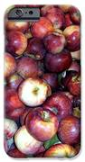 Apples iPhone Case by Janine Riley