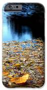 Autumn Lake iPhone Case by Steven Milner