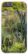 Autumn Swamp iPhone Case by Bill  Wakeley