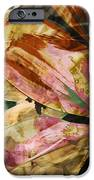 Awed II iPhone Case by Yanni Theodorou