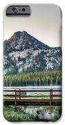 Beautiful Bridge View iPhone Case by Robert Bales