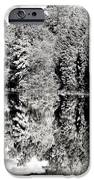 Blended Nature iPhone Case by John Rizzuto