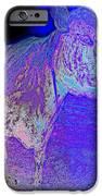blue mooh iPhone Case by Hilde Widerberg