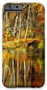 Bob's Creek iPhone Case by Lois Bryan