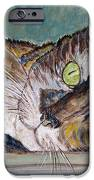 Calico Cat iPhone Case by Ella Kaye Dickey